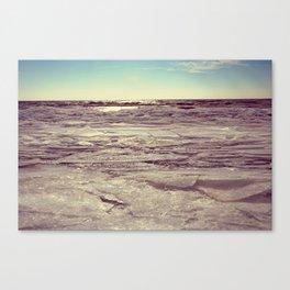 Winter on Lake Erie Canvas Print