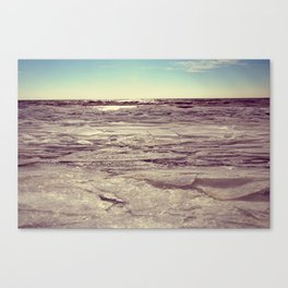 Winter on Lake Erie Canvas Print