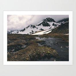 Alaskan mountain meadow Art Print