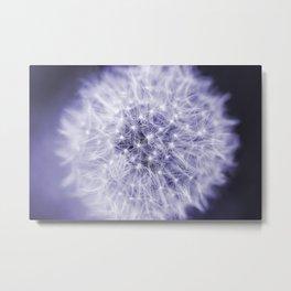 Blue Dandelion Metal Print