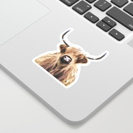 Highland Cow Portrait Sticker