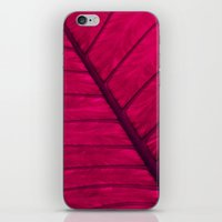 leaf iPhone & iPod Skins featuring leaf by Claudia Drossert