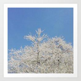 White blossoms in Stuttgart, Germany Art Print