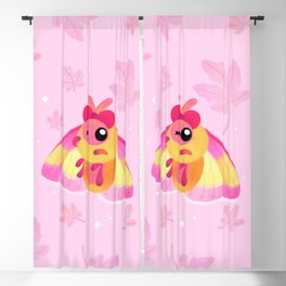 Rosy Maple Moth Blackout Curtain