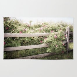 Fence Draped in Rosa Rugosa Rug