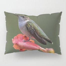 Humming bird resting on a flower Pillow Sham