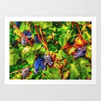 Vineyard, imitation oil paintings Art Print