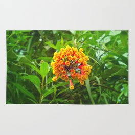 Wake up and plant flowers by #Bizzartino Rug