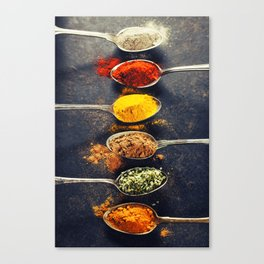 Colorful spices in metal spoons Canvas Print