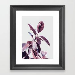 plant55 Framed Art Print