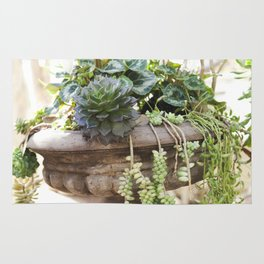 Overflowing Succulents Rug