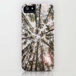 Oaks iPhone Case