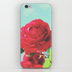 Vintage Rose iPhone & iPod Skin