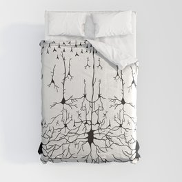 Six Cortical Layers Comforters