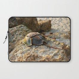 Horseshoe Crab Laptop Sleeve