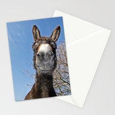 lucky Donkey Stationery Cards