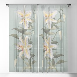 Golden Rayed Lily Sheer Curtain