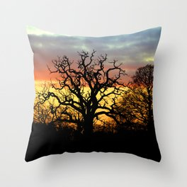 Winter sunset behind a curly tree Throw Pillow