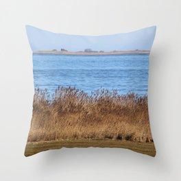 At the beach 7 Throw Pillow