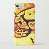 monty python iPhone & iPod Cases featuring Lemon Python by LeeAnnPoling
