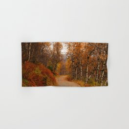 Winding country road in a fall forest Hand & Bath Towel