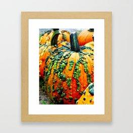 Country Bump-kin Framed Art Print