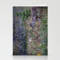 coyote Stationery Cards featuring Coyote by Stu Naranch