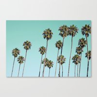 palm trees Canvas Prints featuring Palm Trees by Mareike Böhmer Photography
