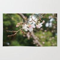 sakura Area & Throw Rugs featuring sakura by artsimo