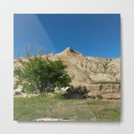 Rugged Landscape Tree Metal Print