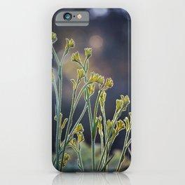 Kangaroo Paw Illuminated III iPhone Case