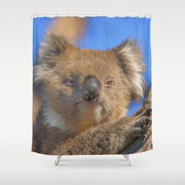 Cute Koala (digital painting) Shower Curtain