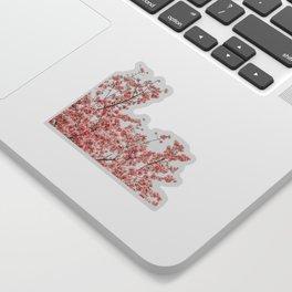Cherry Blossoms (Color) Sticker