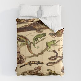 Reptiles Vintage Scientific Illustration Educational Diagrams Popular History of Animals Comforters