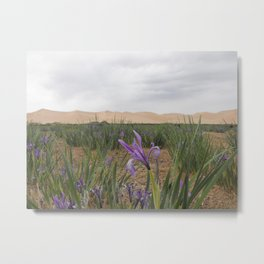 Just Before the Desert Comes Metal Print