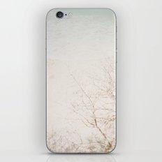 Overplay iPhone & iPod Skin