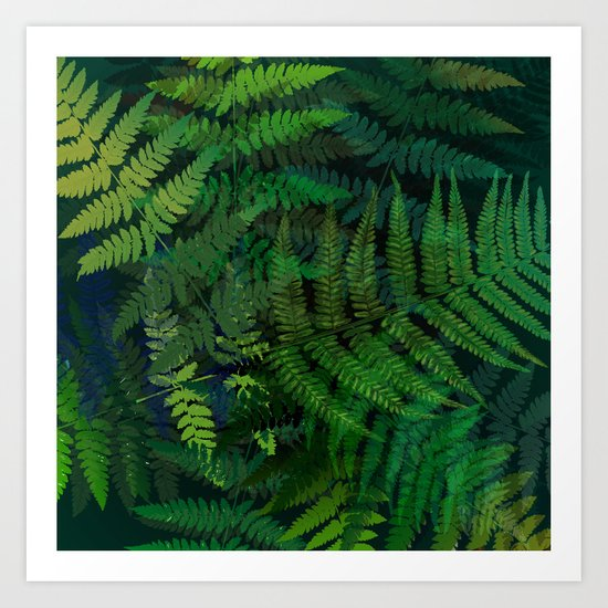 Forest Fern Art Print