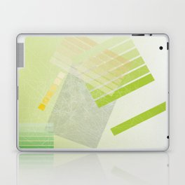 macintosh Laptop & iPad Skin