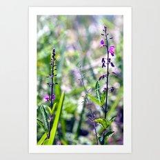 I Dream in Shades of Purple Art Print