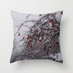 Winter in Romania Throw Pillow