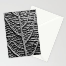 leaf vein macro II Stationery Cards