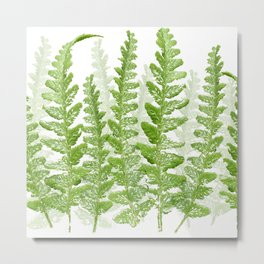 Green Fern Group Metal Print