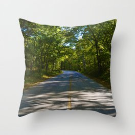 The road to Point Pelee National Park, Ontario Canada Throw Pillow