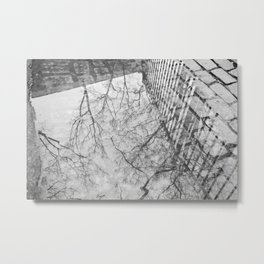 Winter Trees Reflected in A Rain Puddle Metal Print