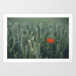 Scintilla Art Print