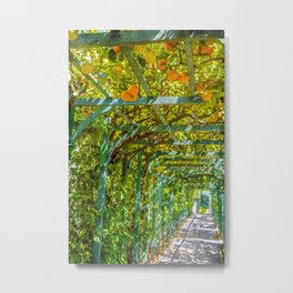 Oranges and Lemons - Lombardy, Italy Metal Print