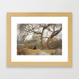 Under the tree Framed Art Print