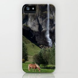 Horse in Iceland iPhone Case