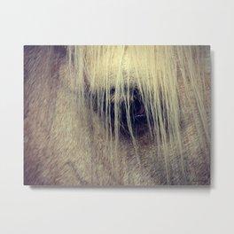 Palomino Horse Eye Metal Print
