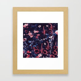 Cobalt And Carmine Bold Night Floral Framed Art Print